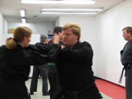 About Bujinkan Budo Taijutsu Training